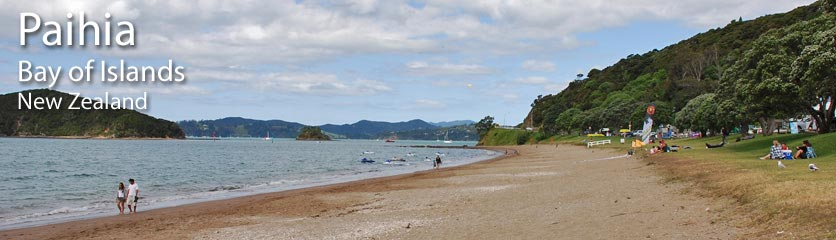 Health Services in Paihia